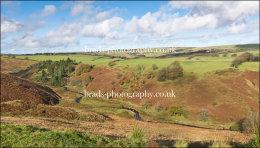 Autumn on Exmoor