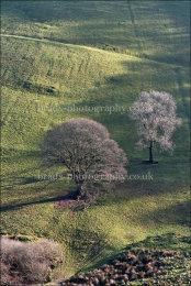 Winsford Punchbowl