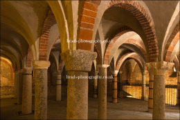 In the crypt