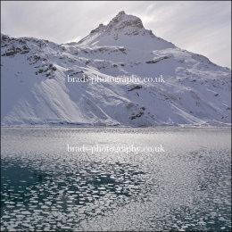 Ice at King Edward Cove
