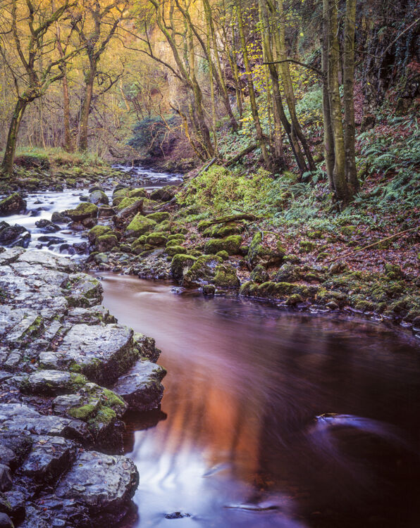 Autumn Light, River Twiss, Yorkshire Dales, 1994