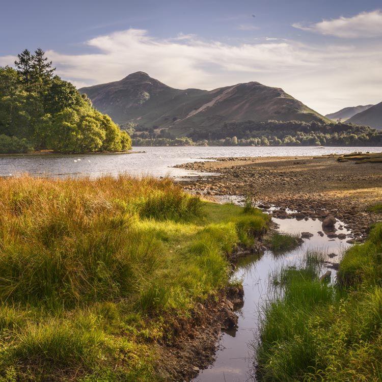 L29 Catbells, Derwent Water, Cumbria