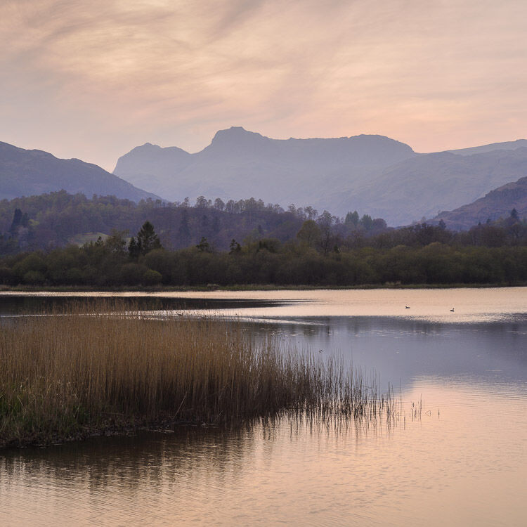 L16 Evening Light, Elterwater, Langdale