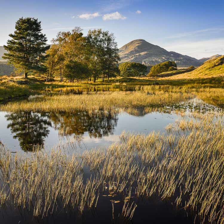 Kelly Hall Tarn and The Old Man of Coniston, Cumbria, 2019