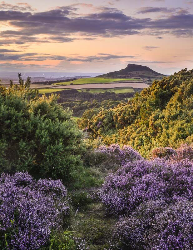 LATE SUMMER, ROSEBERRY TOPPING, YORKSHIRE, 2019