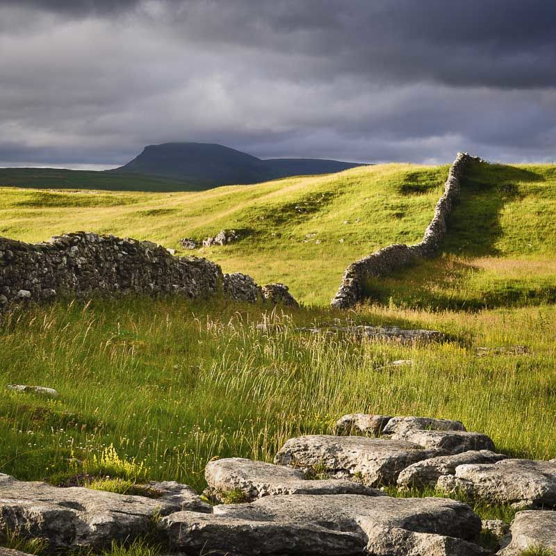 D23 Before the Storm, Penyghent, Ribblesdale