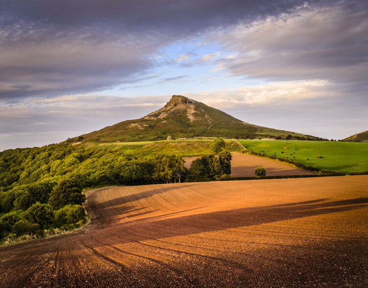 ROSEBERRY TOPPING, NORTH YORK MOORS NATIONAL PARK, 2016