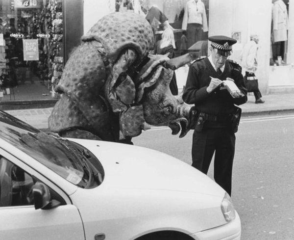 Traffic Warden and Rhino, Stall Street, 2000