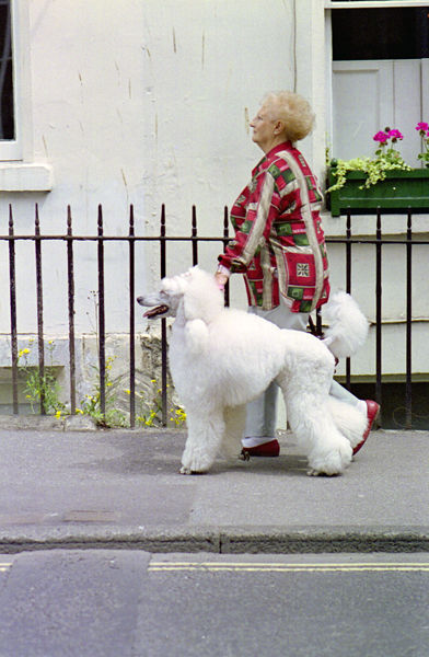 Woman with poodle, Manvers St 2005