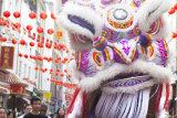 Moon festival, Chinatown 1