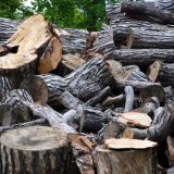 Timber, Newnham Courtney.