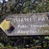 The Thames Path, Sutton Courteney.