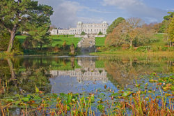 Powerscourt 6