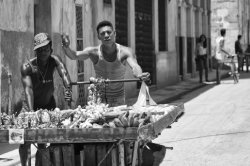 Havana 4