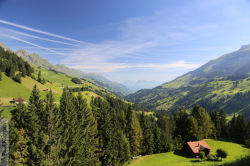 Berner Oberland 7