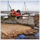 Mersea Island Boats