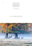114 Ashridge Deer No 4