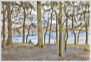 Derwent Water Trees 2