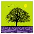 Norfolk Tree, Hastings Birds & Harpenden Moon