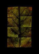 21st Century Leaf Map NO 3, 2011