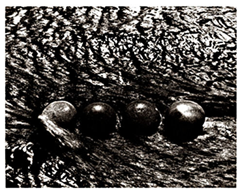 Four Stones In The Black Stream No.2 - 1998