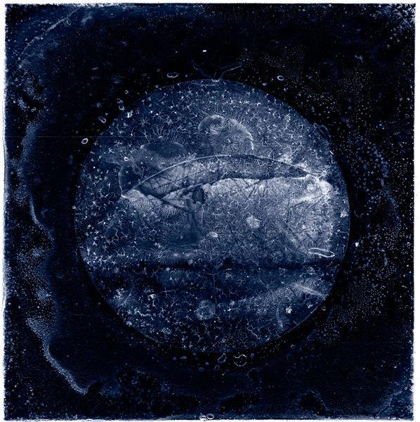 Full Moon over Mayo 2008 remix