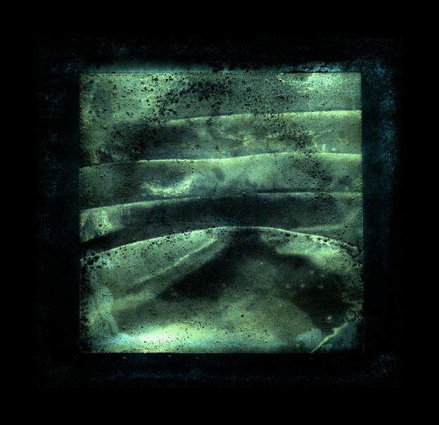kelp underwater - cruisaig - 44cm x 44cm