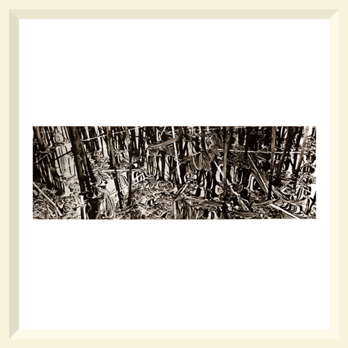 On the Margin No.2 - Mere Sands Wood - 2003