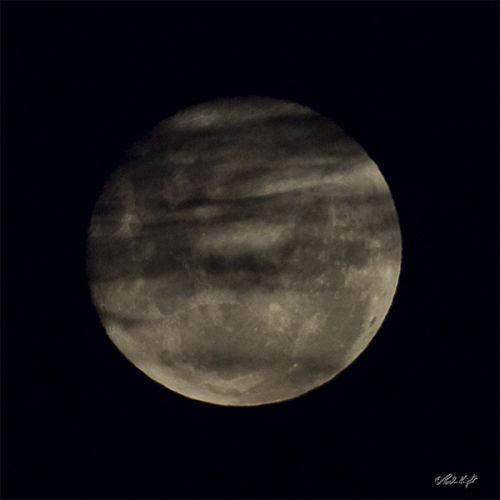 Full moon 1005