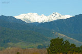 Tararua Snow 1831 from Otaki River