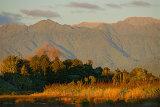 Tararua Range from Papaitonga Wetland 0864-1