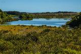 Papaitonga Wetland_0377