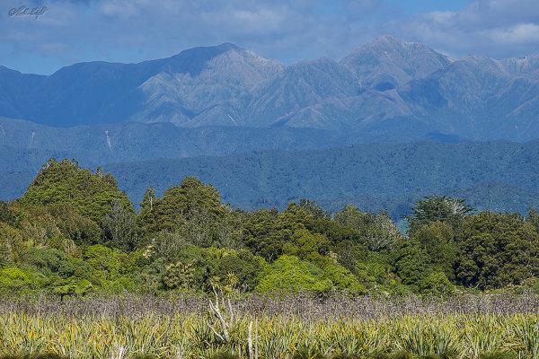 Tararua Range from Papaitonga Wetland 1421-1
