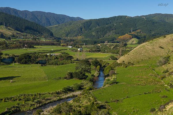 Waikawa-Stream_1513