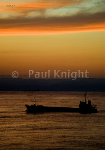 freighter649