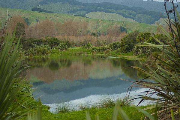 Chrystall's Lagoon, Otaki 0008