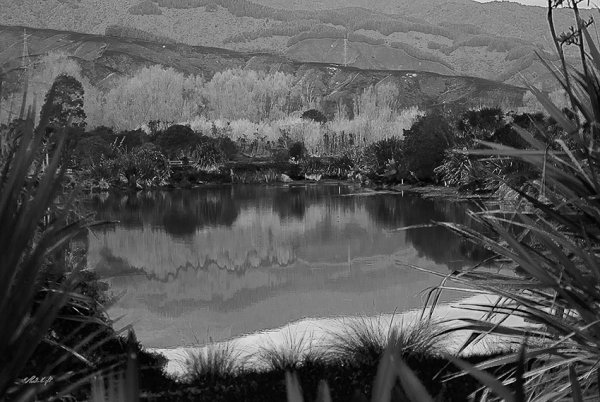 Chrystall's Lagoon, Otaki 0008B&W