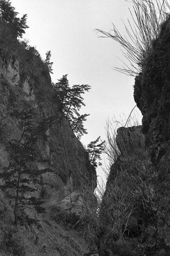 Noto Peninsular Coast#28