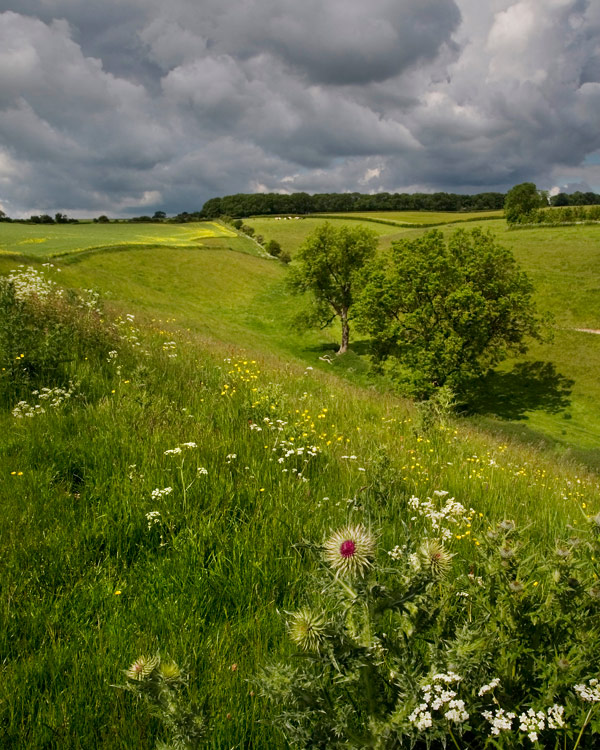 Grey Clouds Over Horse Dale