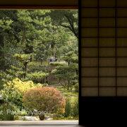 Kenrokuen Garden II, Kanazawa