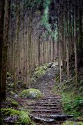 Kumano Kodo Path 1