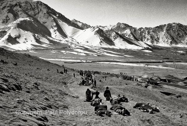 Ladakh-plain2
