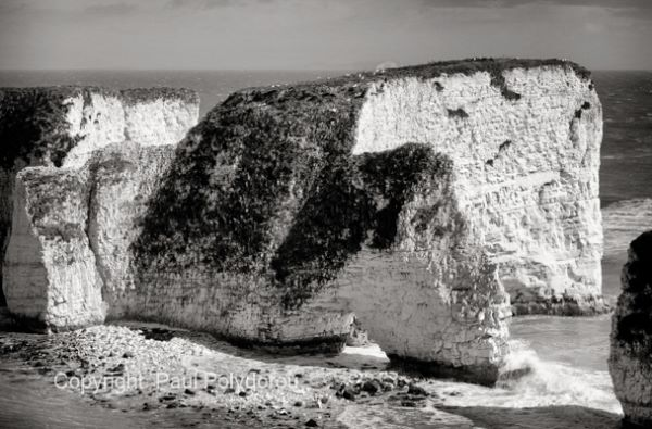Old Harry's Rock, Dorset