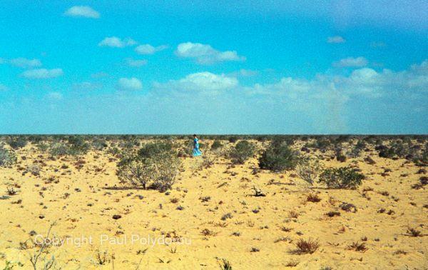 Western Desert - Egypt