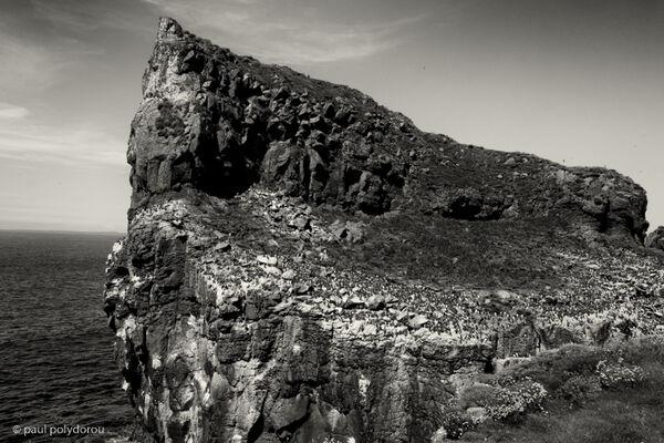 Harp Rock, Lunga