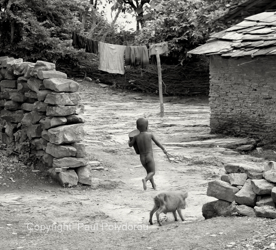 Village boy with piglet