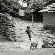 Village boy with piglet