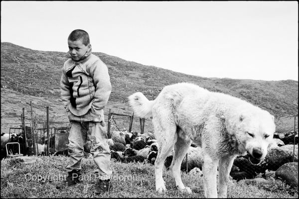 Yazidi boy Armenia