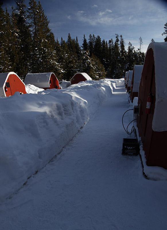 Yurtlets