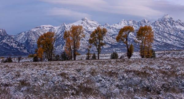 Dawn, Grand Tetons